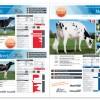 Alta Italia catalogo agosto 2013
